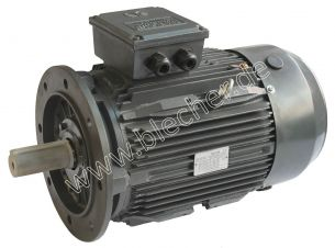 DS-Motor Typ TM 315S-2