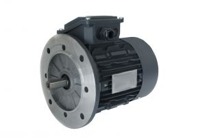 DS-Motor Typ TM 90S-2